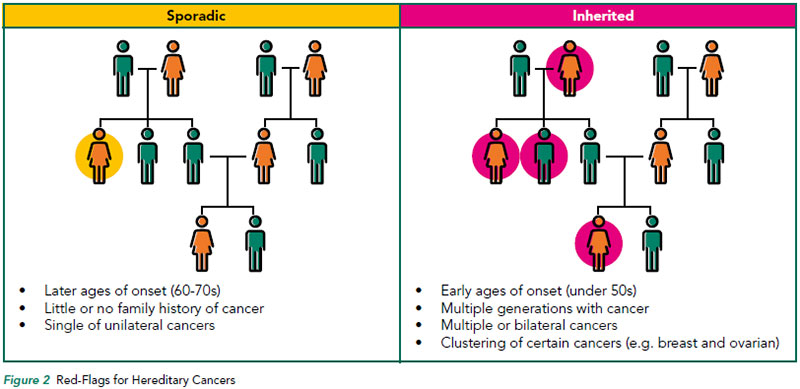 Red-Flags for Hereditary Cancers - NCCS