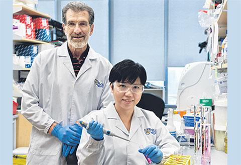 Scientists find new drug that kills liver cancer cells