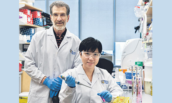 of the Cancer ScienceInstitute ofSingapore havedesigned amolecule toblock theinteractionbetween twoproteins linkedto cancergrowth.
